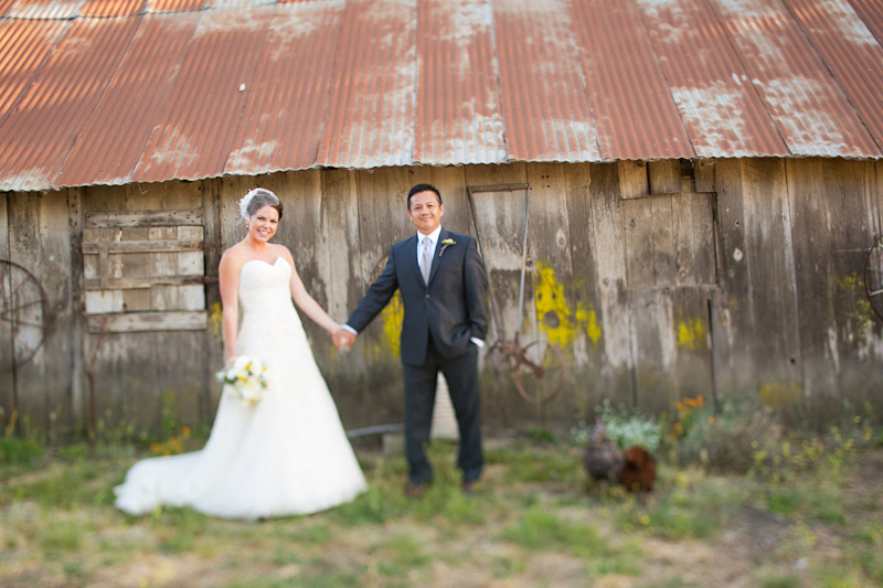 edna valley wedding portraits of the bride and groom by a barn (1 of 2)