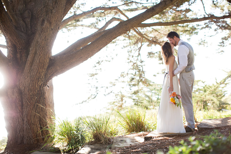big sur wedding photos with couple in the trees (2 of 4)