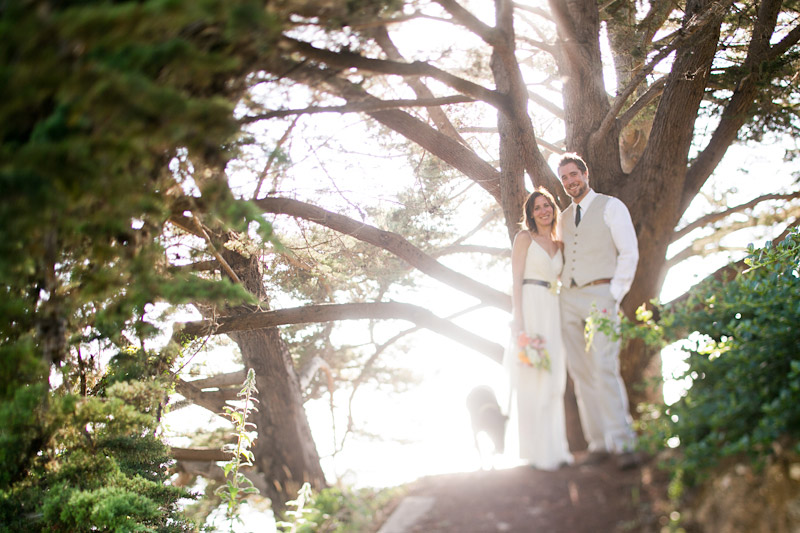 big sur wedding photos with couple in the trees (1 of 4)