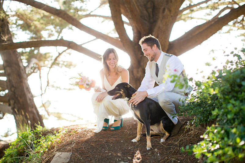big sur wedding photos with couple in the trees (3 of 4)