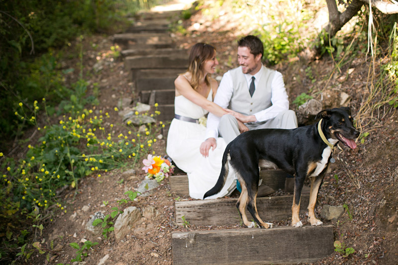 big sur wedding, portraits of bride and groom and their dog