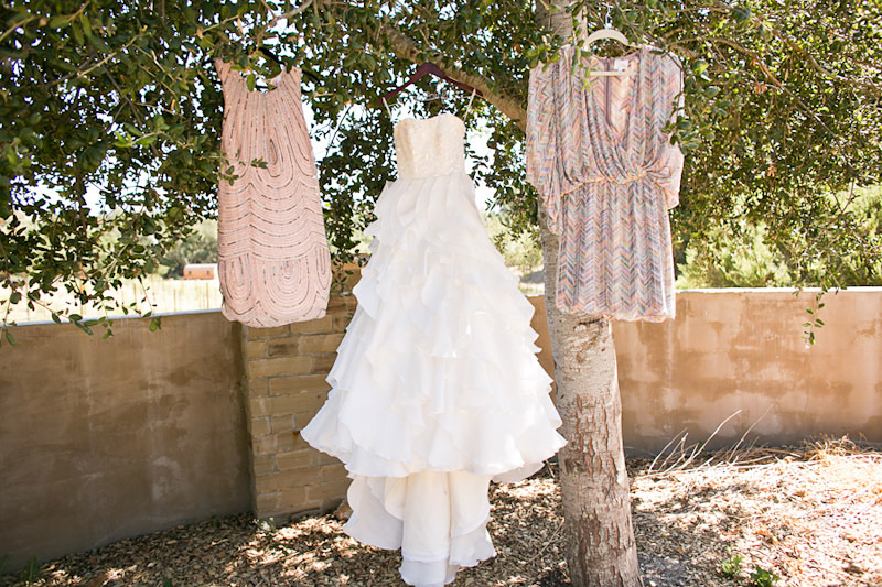 san luis obispo wedding, wedding dress and bridesmaids dresses