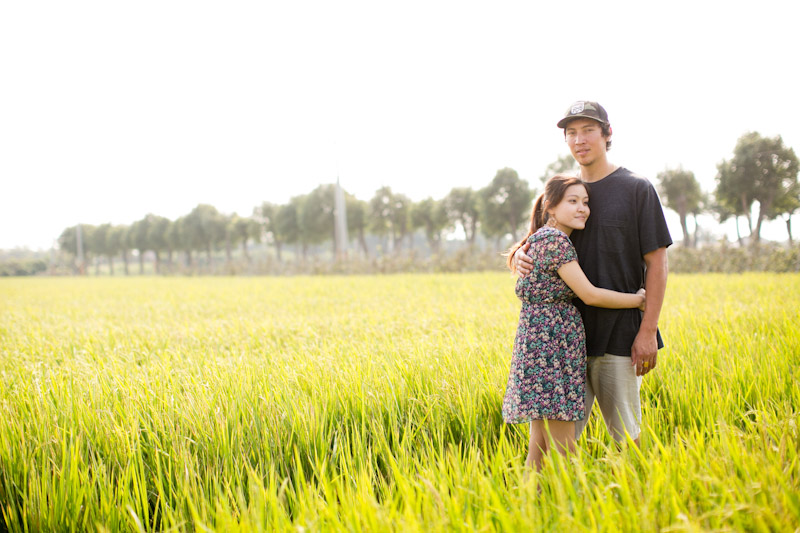 Taiwan wedding. Engaged couple hugging in rice fields.