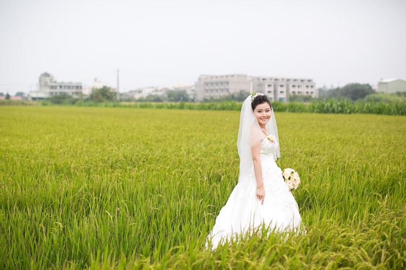 Taiwan wedding. Bride in rice field. (1 of 2)