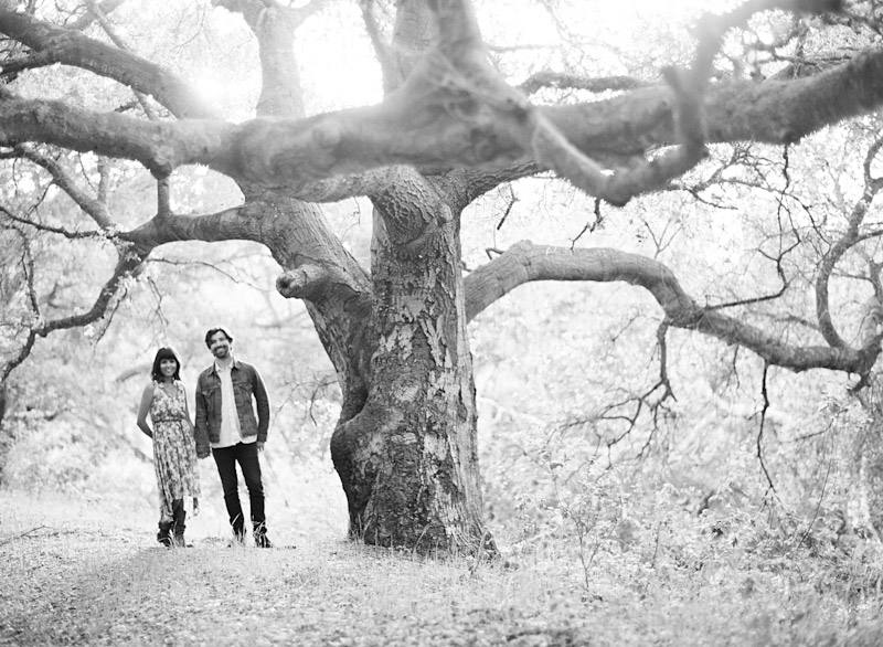 San Luis Obispo engagement medium format film photographs of couple standing under a tree.