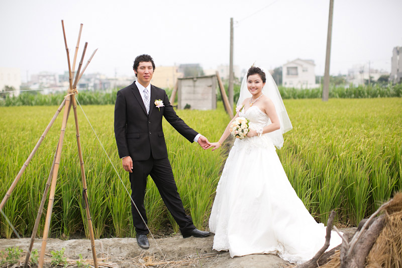 Taiwan wedding, couple in rice field holding hands.