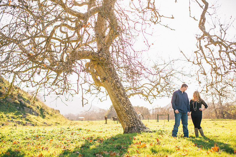 Morro Bay Engagement pictures of couple under tree on ranch by Cameron Ingalls.