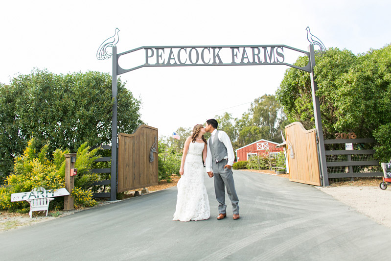 Peacock Farms Wedding Bride and Groom Kissing under the Peacock Farms sign