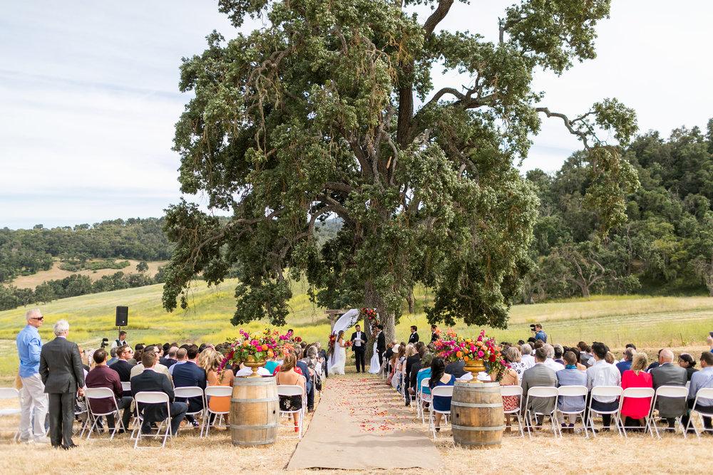 cameron_ingalls-the_farm_winery-madsen-0319.jpg