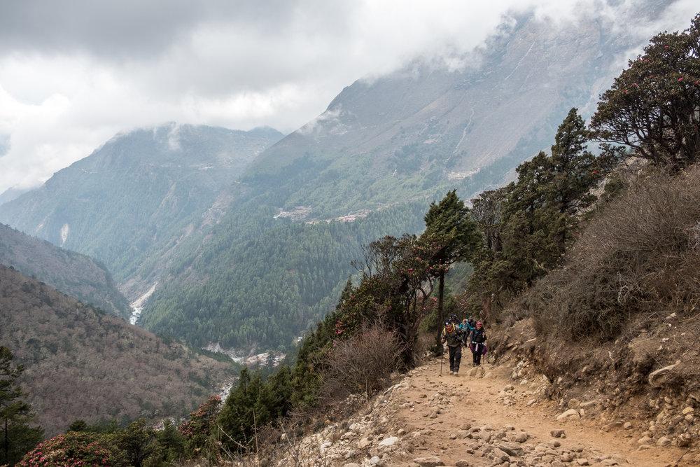 En route to Tengboche, Nepal.