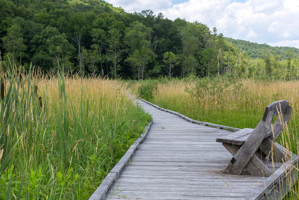 Public Transit Series - The Appalachian Trail, Pawling, New York