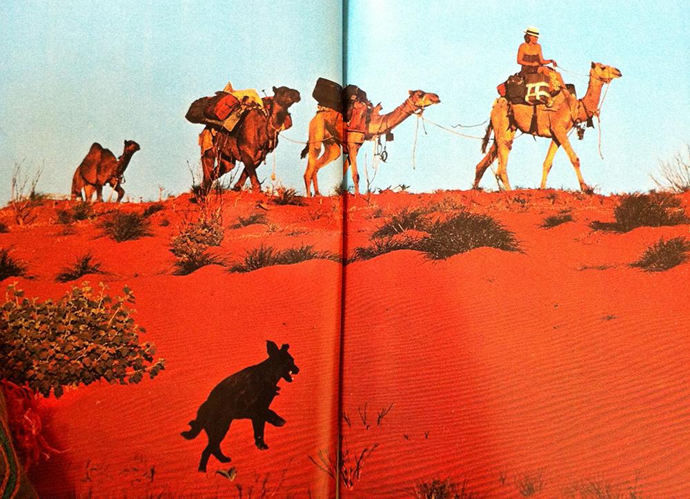 ©Rick Smolan, National Geographic, 1978
