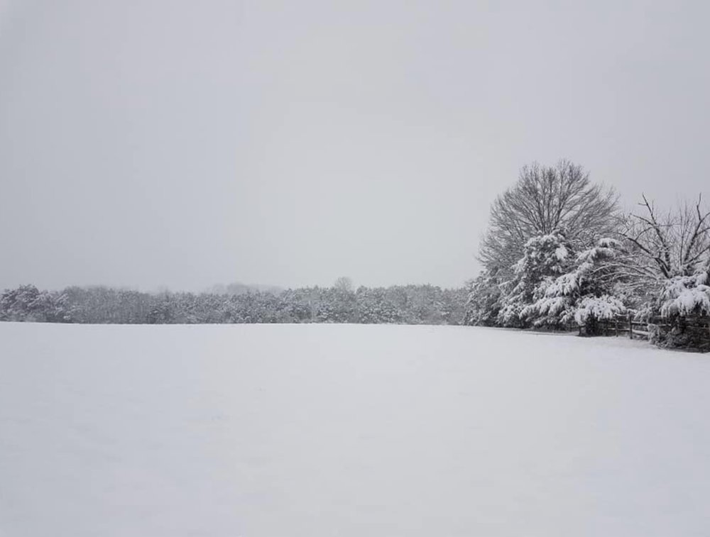 So pristine in the snow