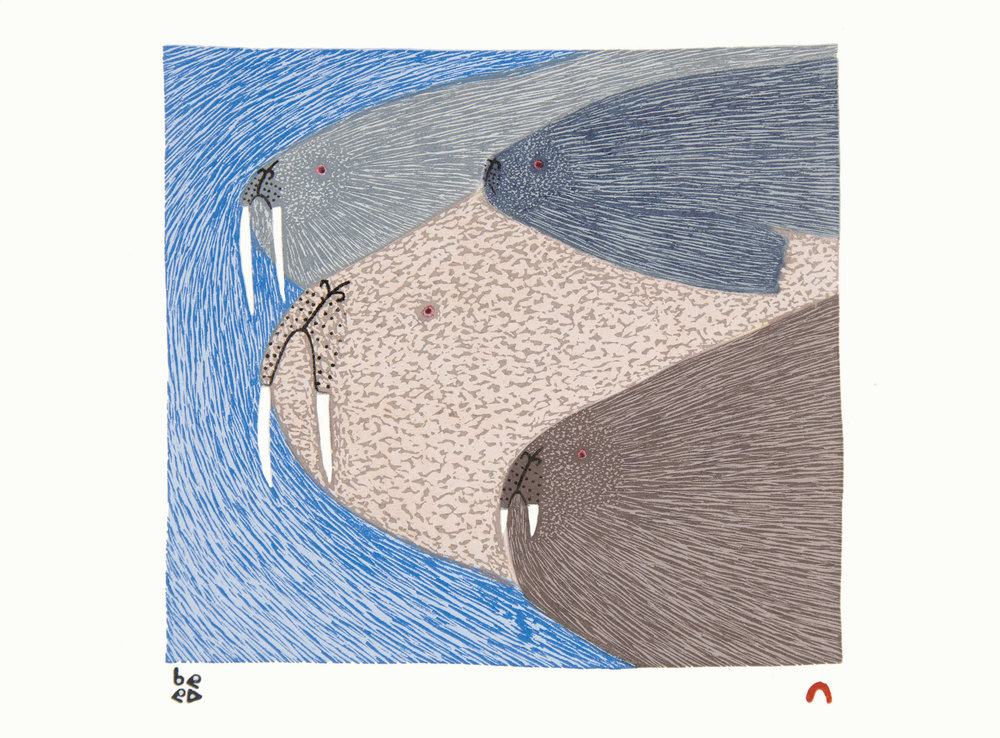8. SWIMMING WALRUS