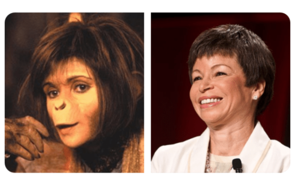 Valerie Jarret next to the Original Planet of the Apes.  The resemblance is amazing.