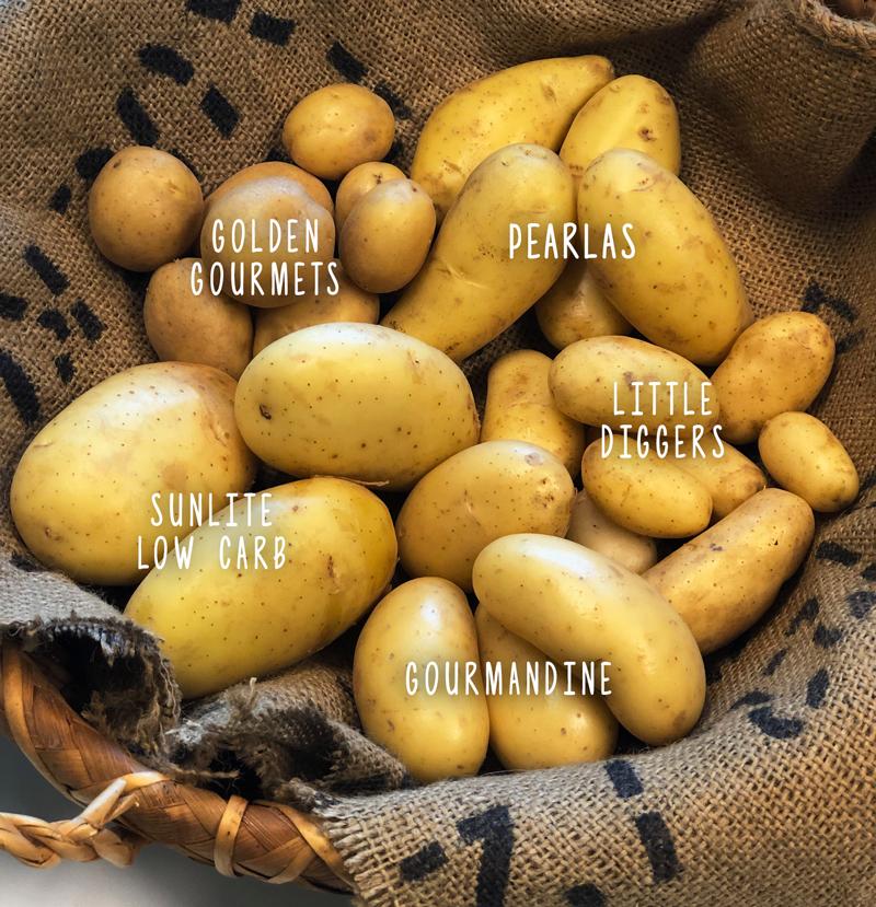 potatoes-blog.jpg