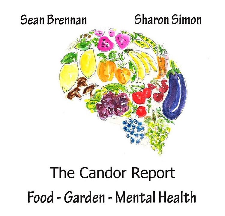 The Candor Report, a podcast, asked Pixie to create an illustration for thier weekly series on itunes -