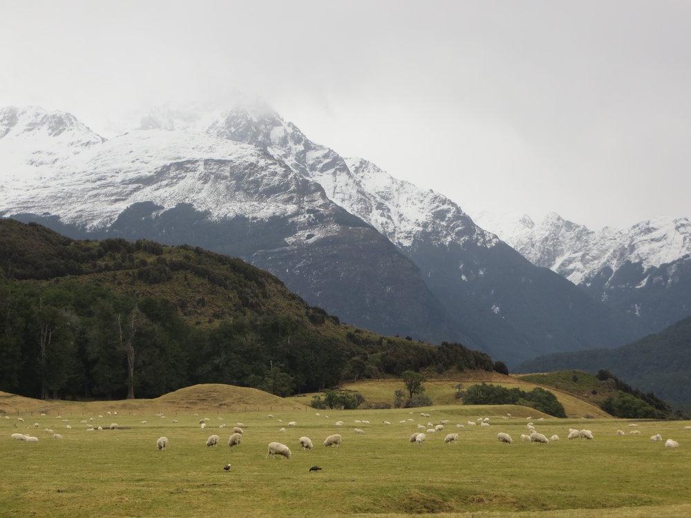 Near Paradise, New Zealand