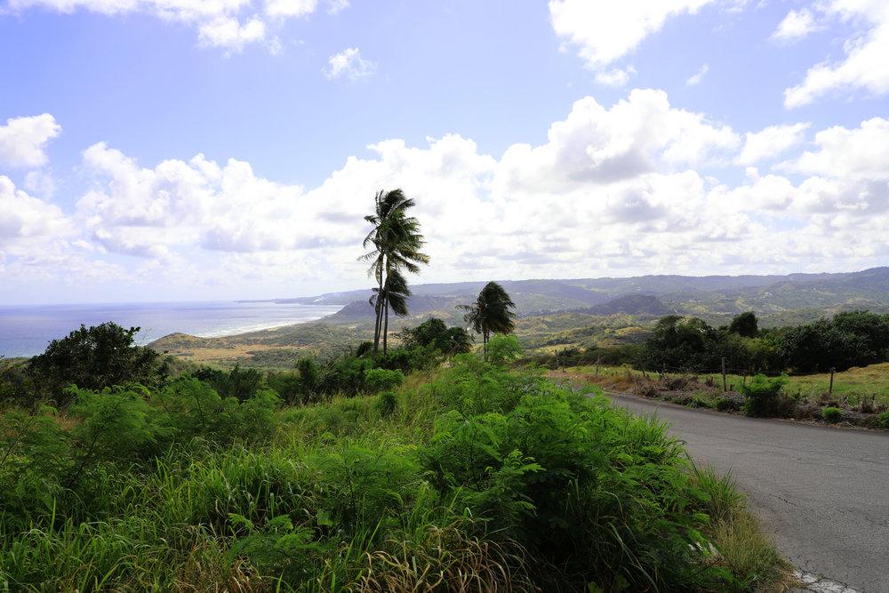 Barbados Abbey View .jpg