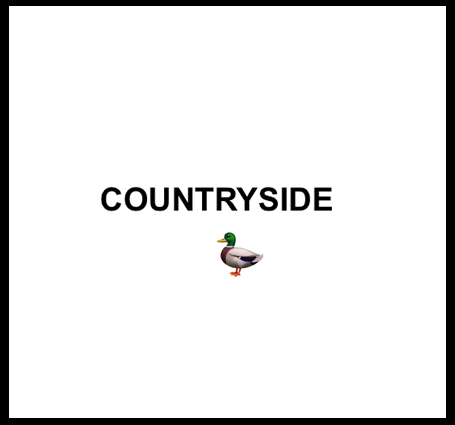 Country duck.jpg