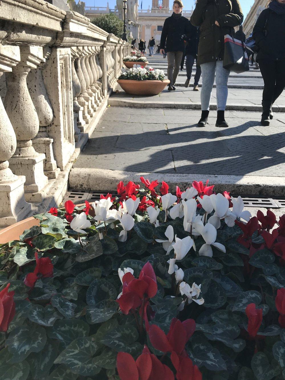 O inverno é florido em Roma - O acesso aos Museus Capitolinos é feito por meio de uma escada pouco íngreme, ladeada por esculturas.