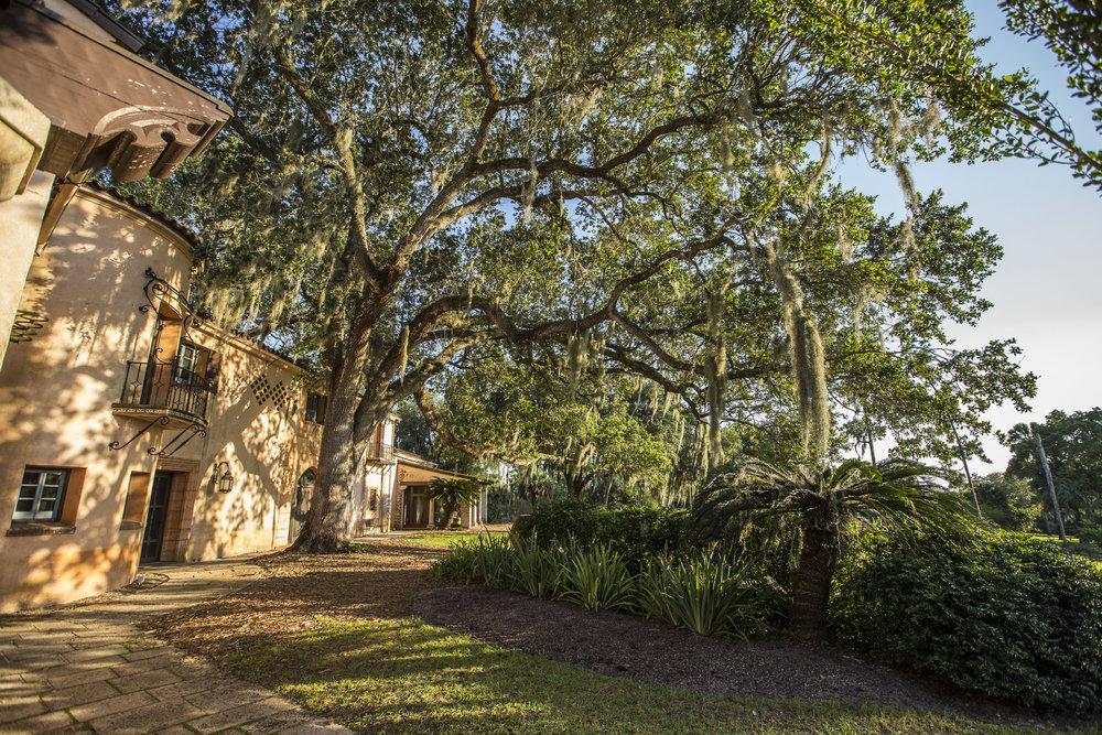 Pinewood Estate 00009.jpg