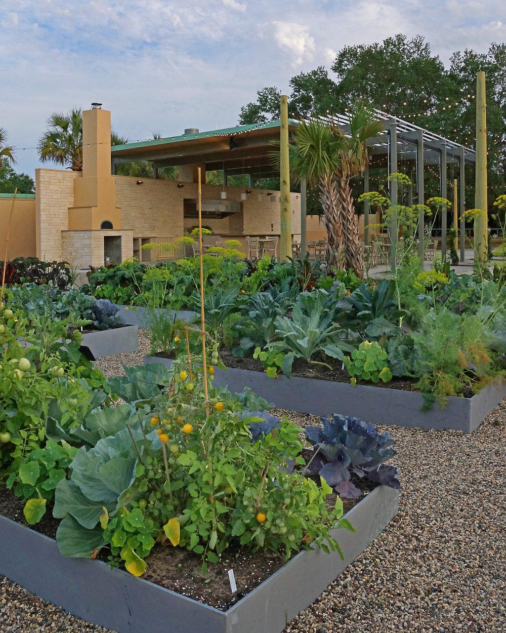 Outdoor Kitchen and Edible Garden 00003.jpg