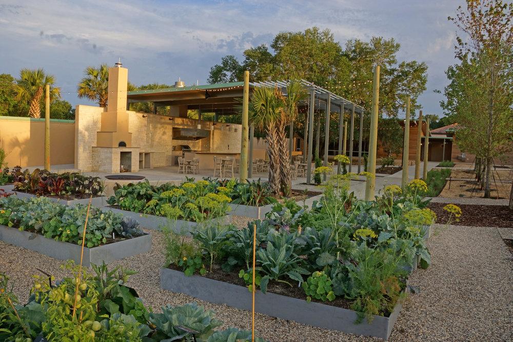 Outdoor Kitchen and Edible Garden 00004.jpg