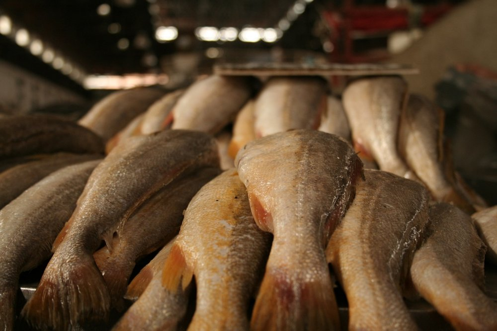 Mercado de peixes - Lisa Cyr.jpg