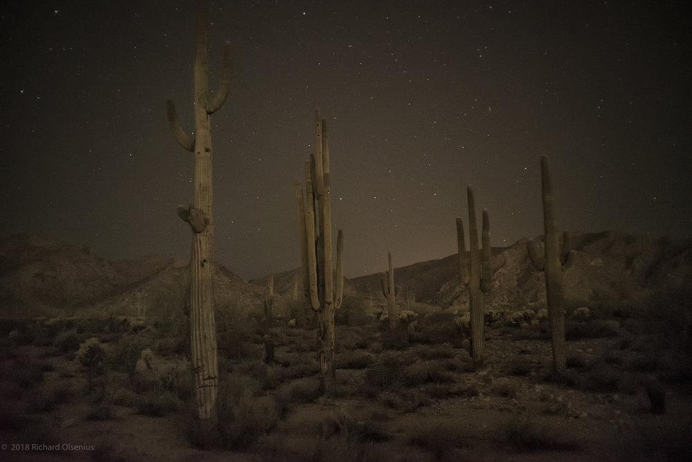 Desert_22