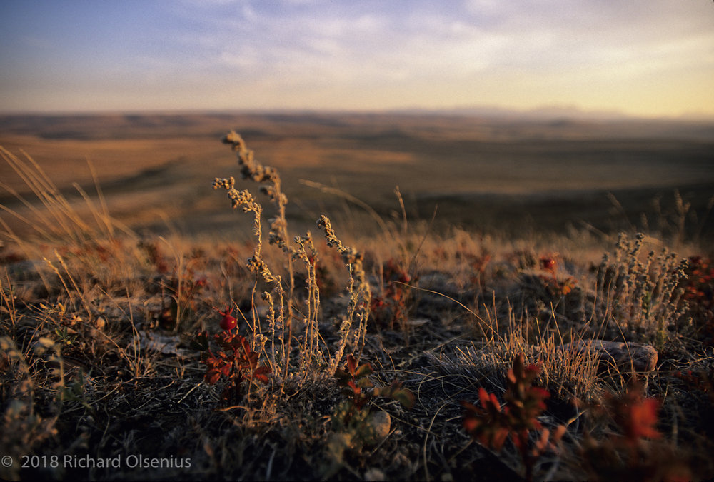 High Plains-15