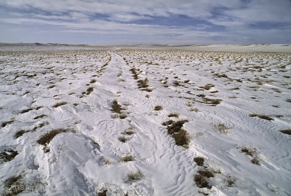 High Plains-31