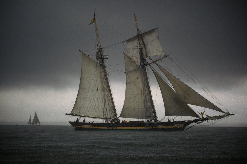 Chesapeake Visions - Explore America's largest estuary