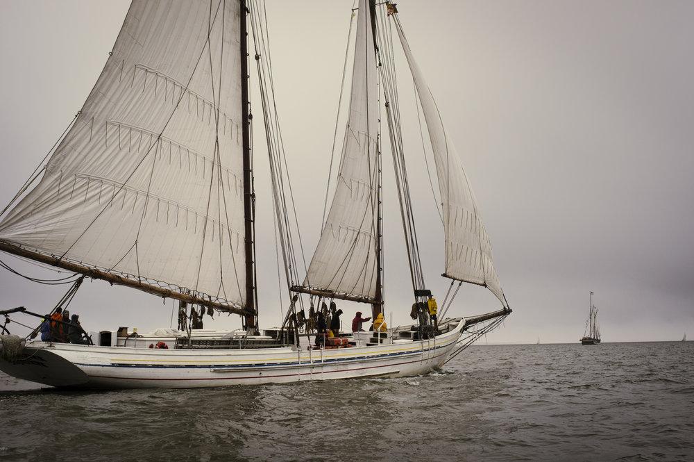 Chesapeake Visions - 1. Chesapeake Maritime2. Chesapeake LandscapesRETURN TO CHESAPEAKE VISIONS STORY