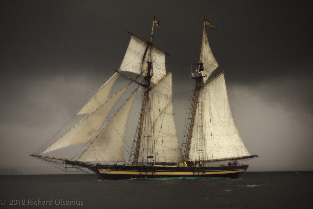 Tall Ships-11