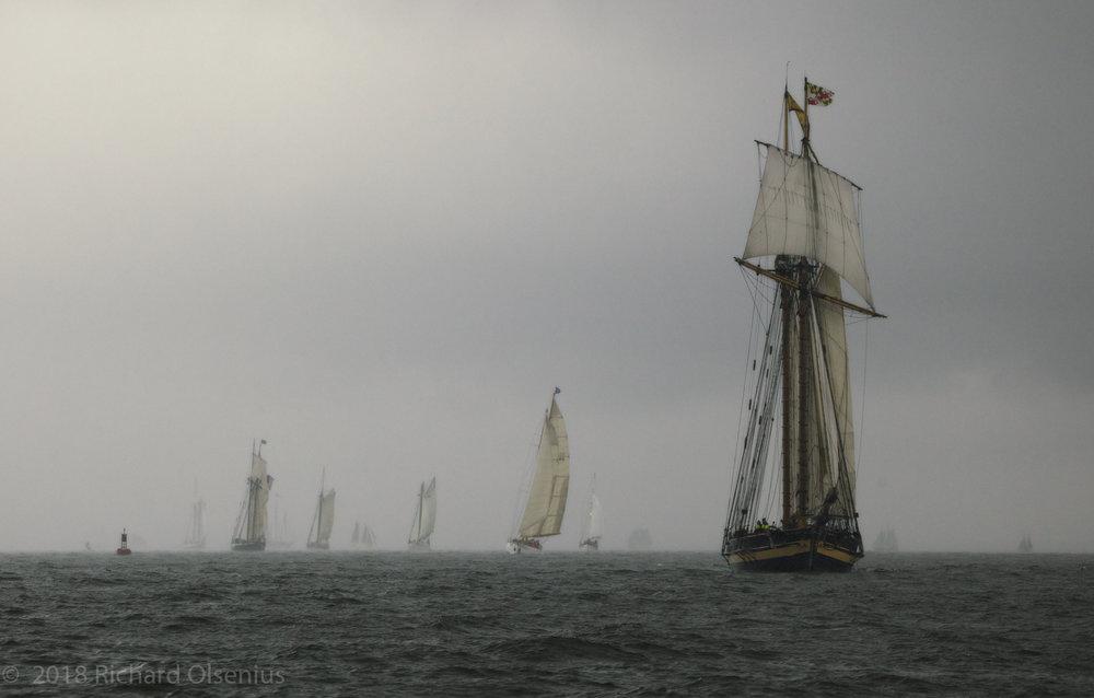 Tall Ships-12