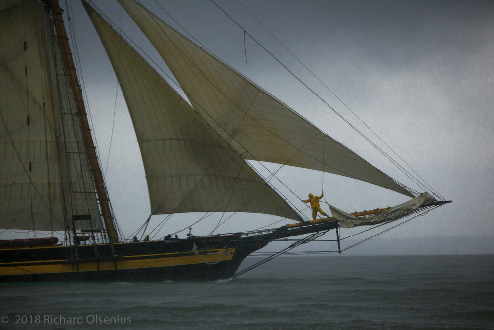 Tall Ships-15