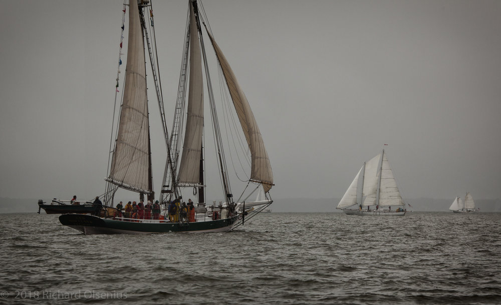 Tall Ships-17