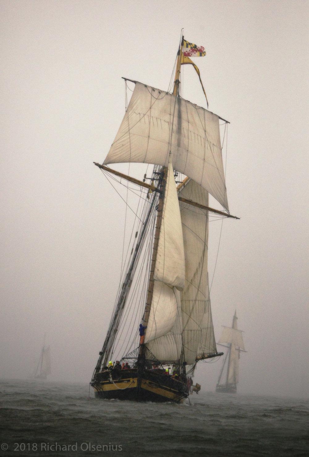 Tall Ships-16