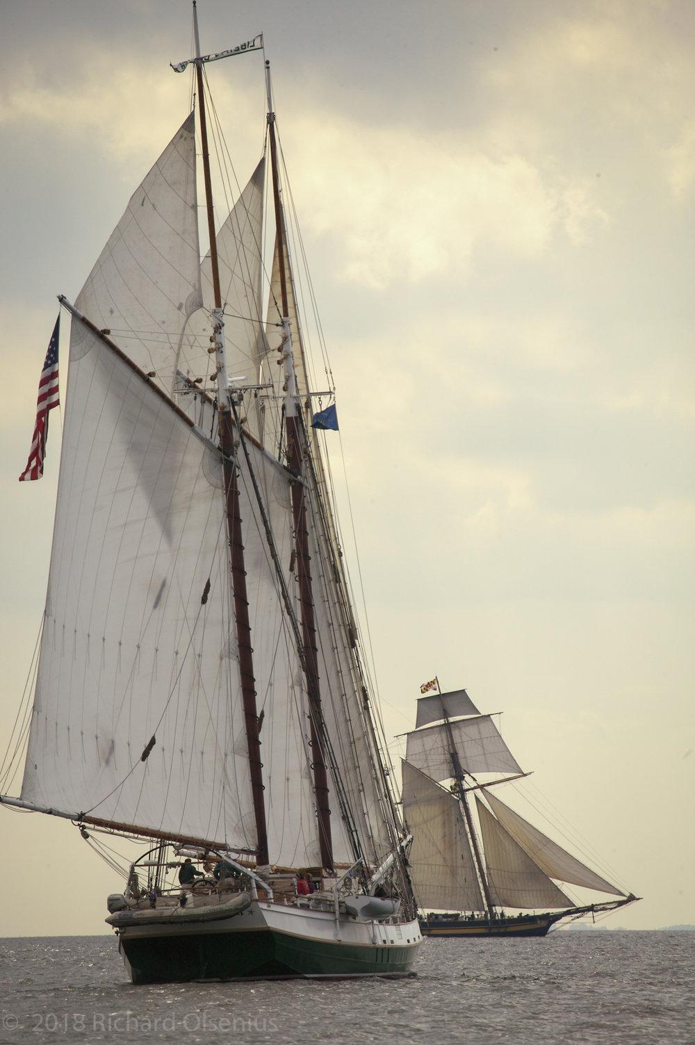 Tall Ships-19