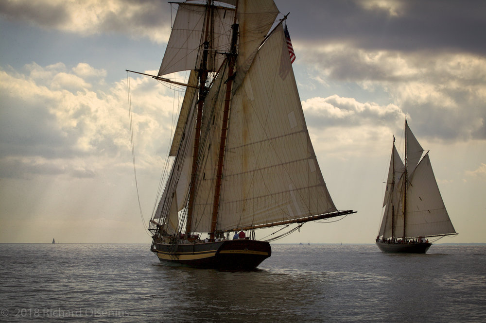 Tall Ships-24
