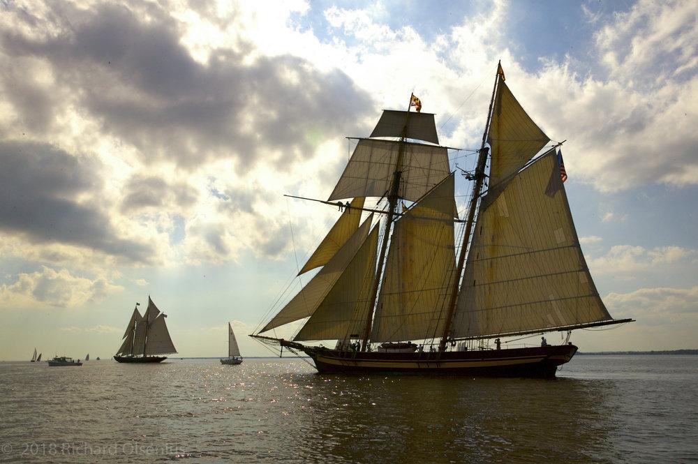 Tall Ships-26