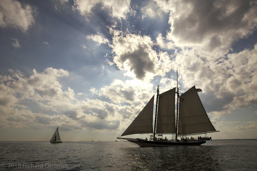 Tall Ships-28