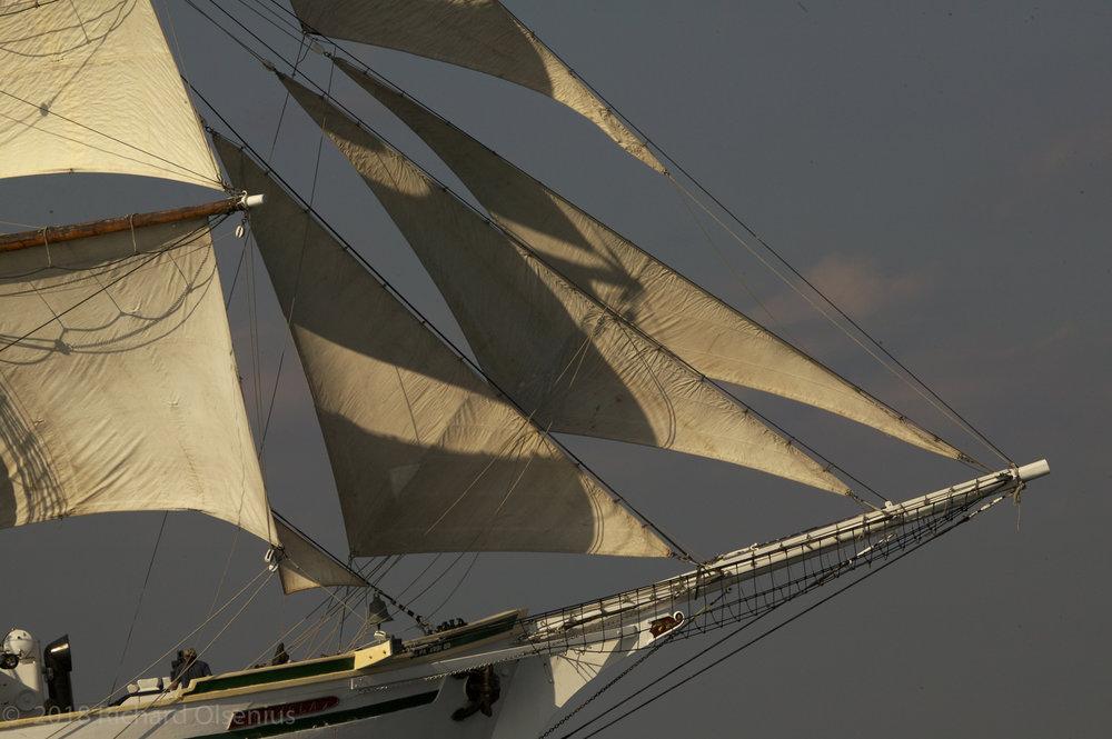Tall Ships-29