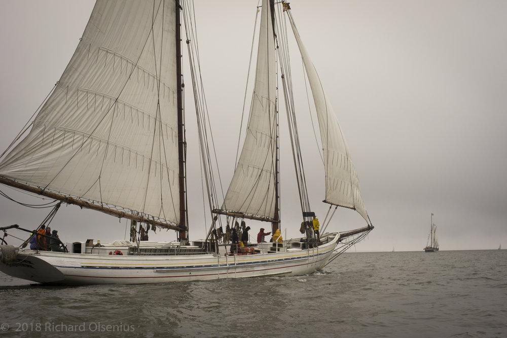 Tall Ships-31