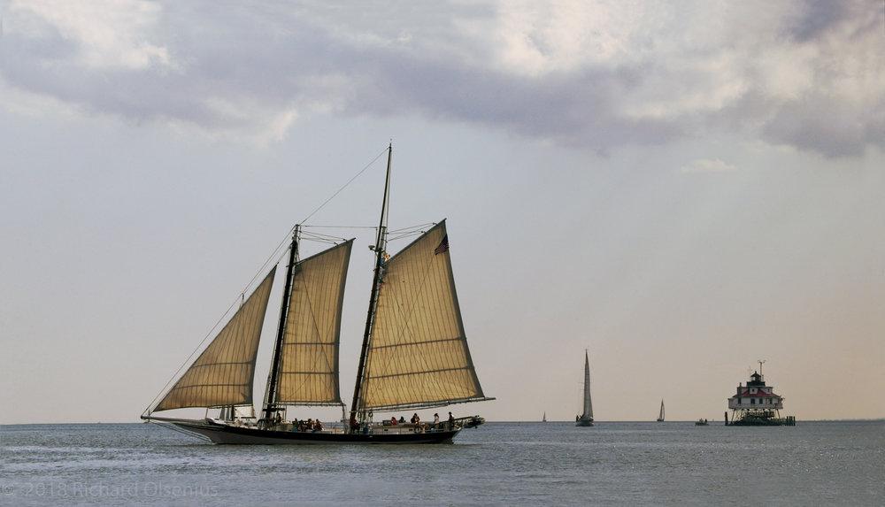 Tall Ships-32