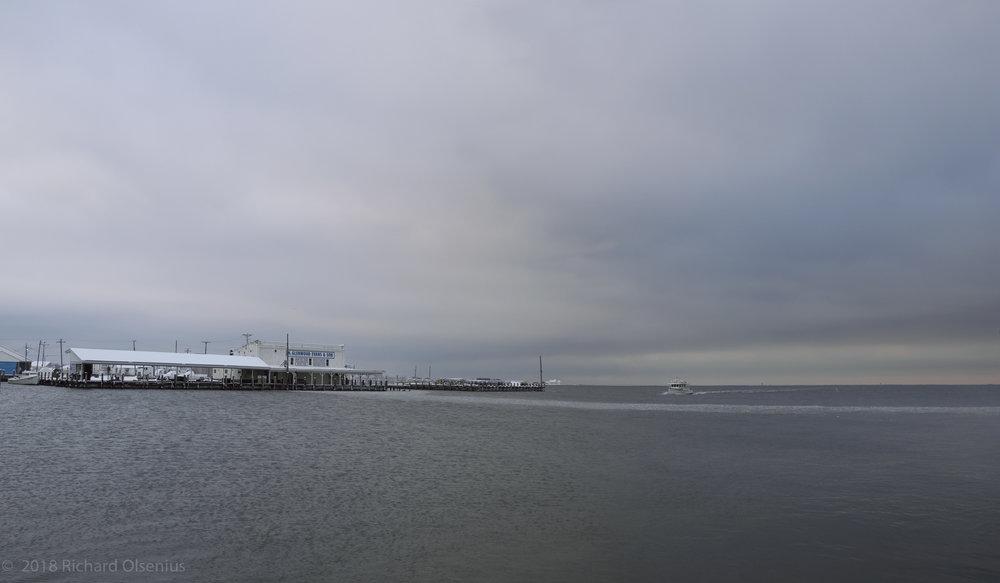 Bay Landscapes-16