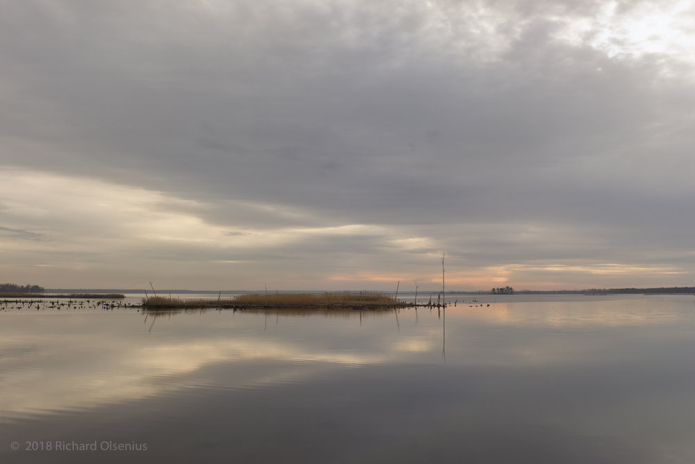 Bay Landscapes-57