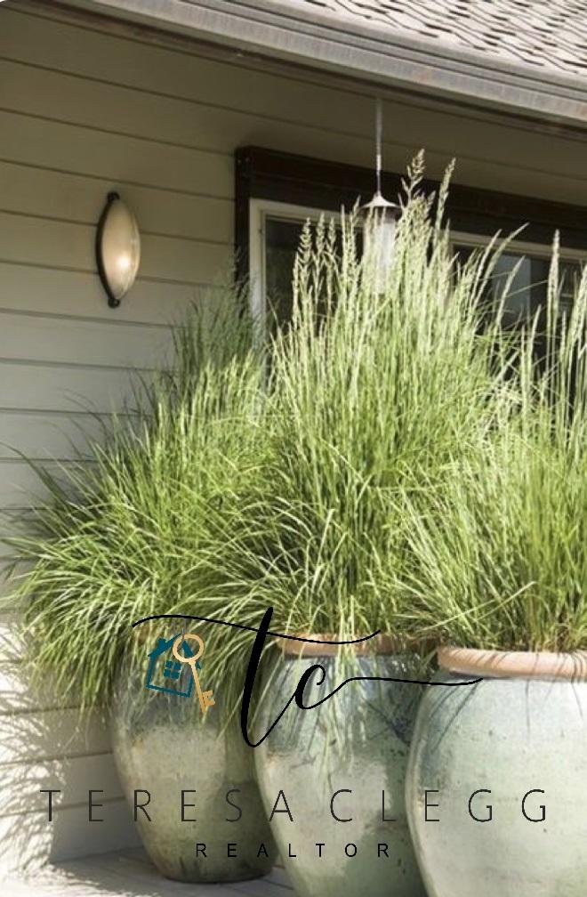 Lemon Grass!! Stylish & Functional