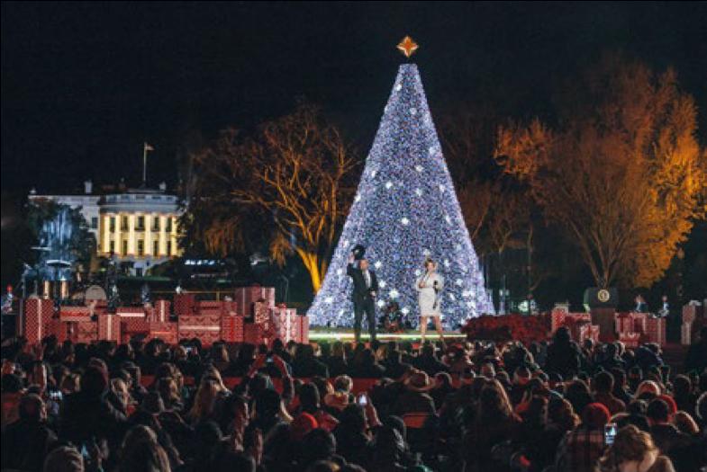 The 2017 National Christmas Tree Lighting (Hallmark Channel)